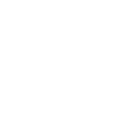 Branding Copyright Icon
